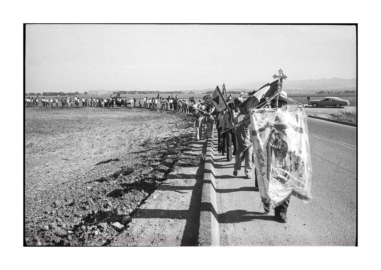 farmworkers-1-8.jpg