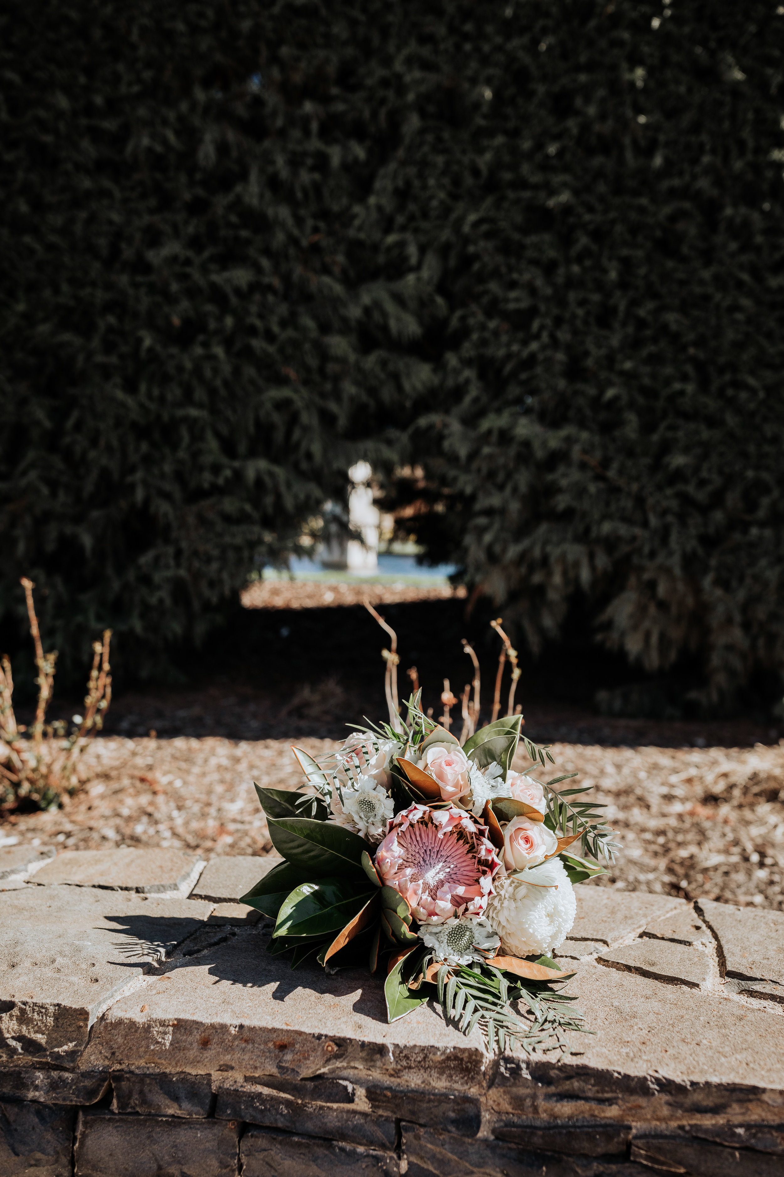 Sarah and Harry Mayfield Oberon Wedding (21 of 923).jpg