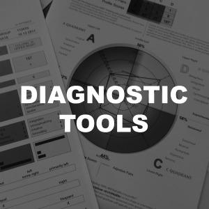diagnostic tools, assessments reports 360