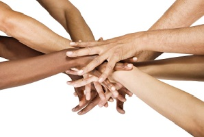 transverse mentoring program