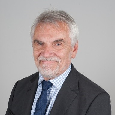 George Gamkrelidze-ye-consultant.jpg