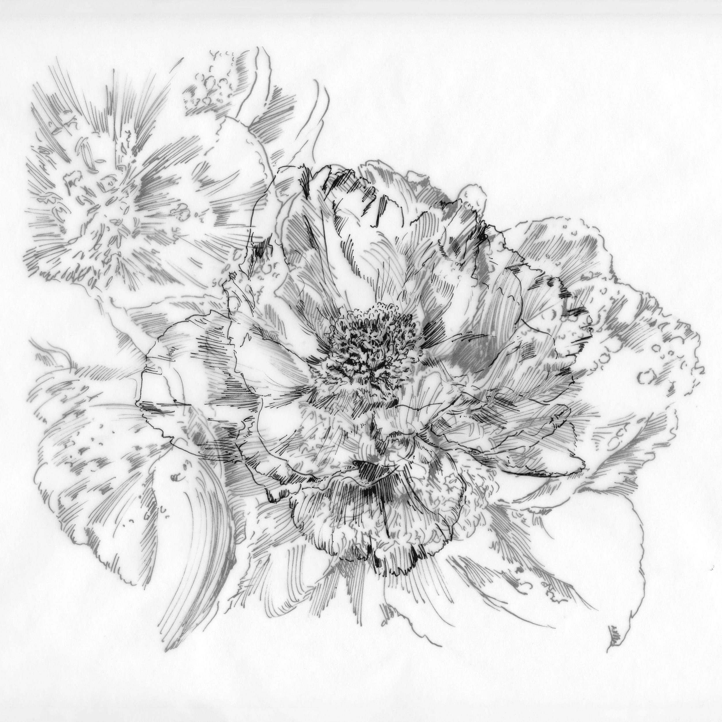 Layered_Floral.jpg