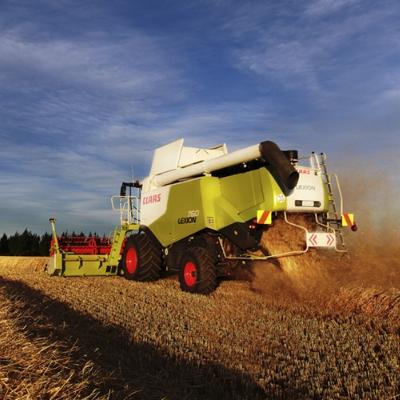 Farm Photography -