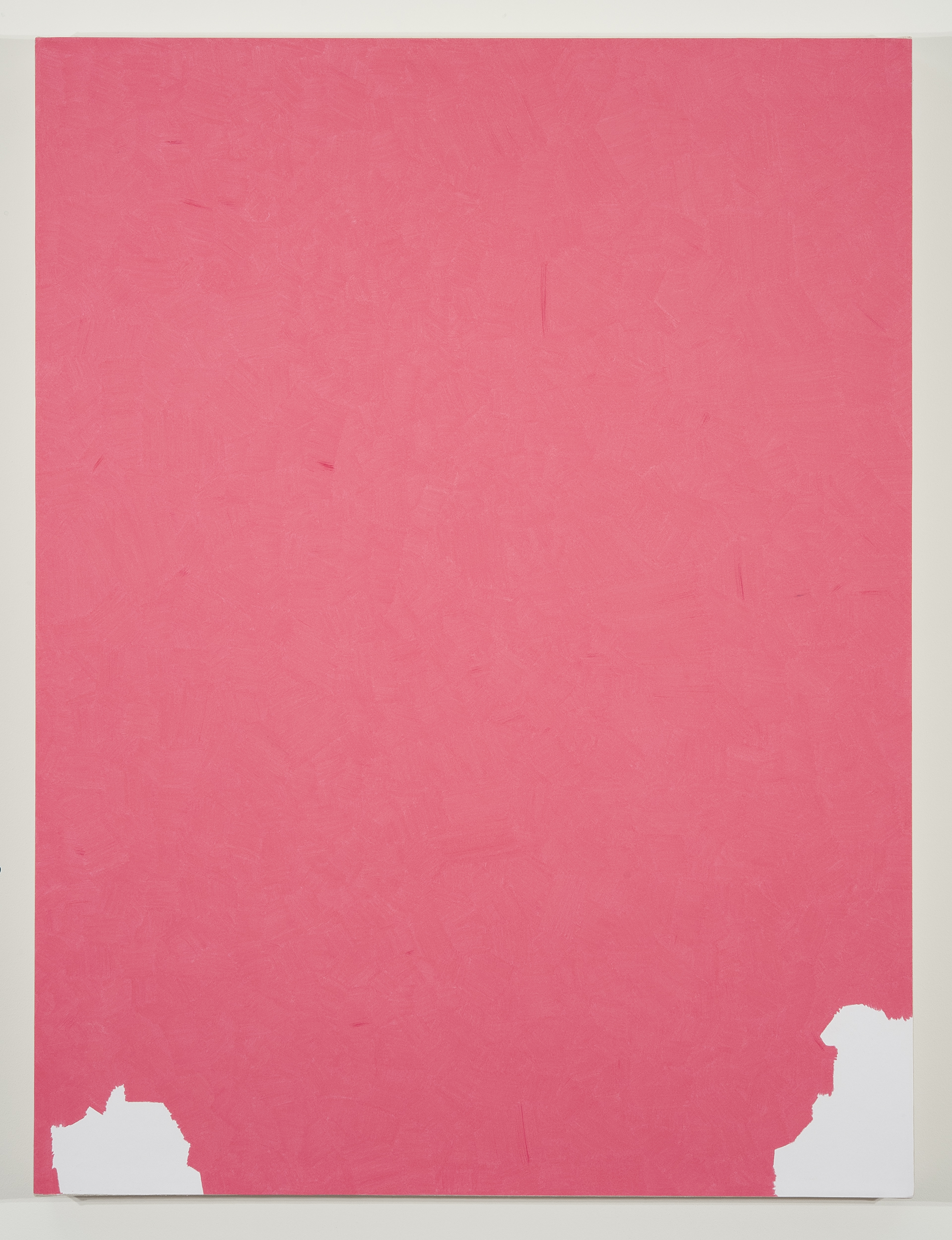 "Lucrecia Troncoso   ""Prismacolor Pink PC929"" 2012.Colored Pencil on Paper. 28 x 37"""