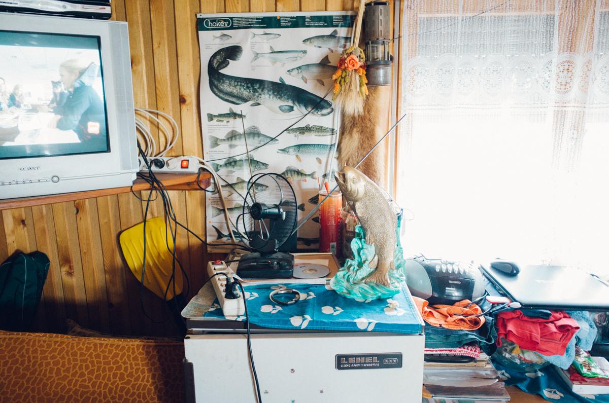 wrenee-by-jason-lake-bokod-hungary-oroszlany-11.jpg