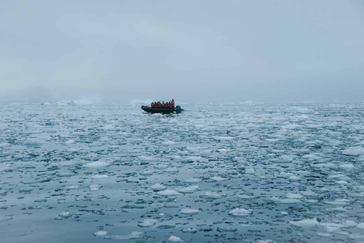 wrenee-antarctica-petermann-island-3.jpg