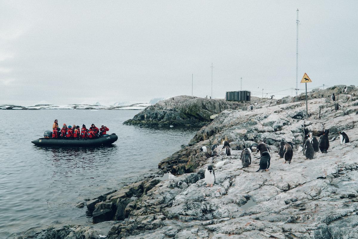 wrenee-antarctica-vernadsky-station-5.jpg