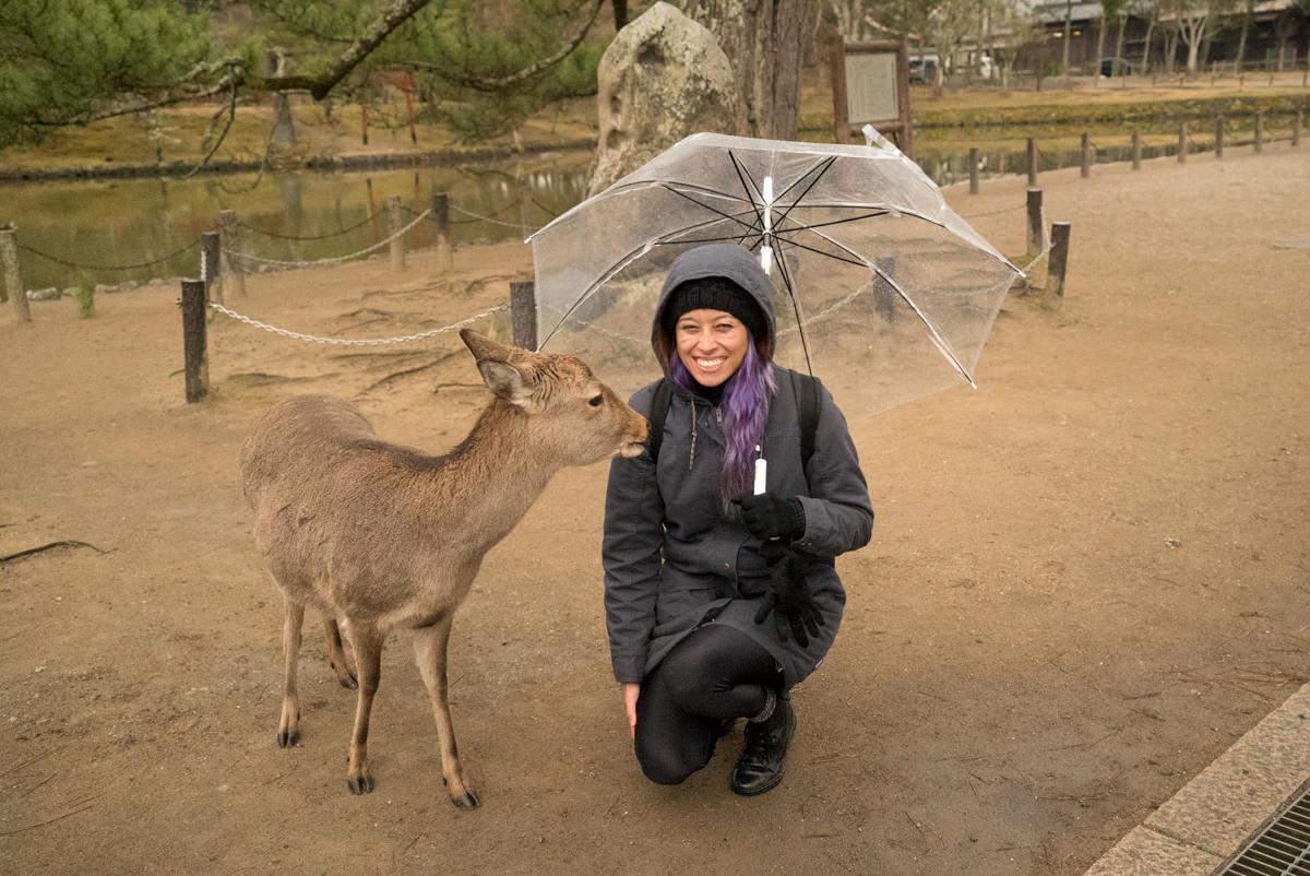 wrenee-nara-deer-park-japan-14.jpg