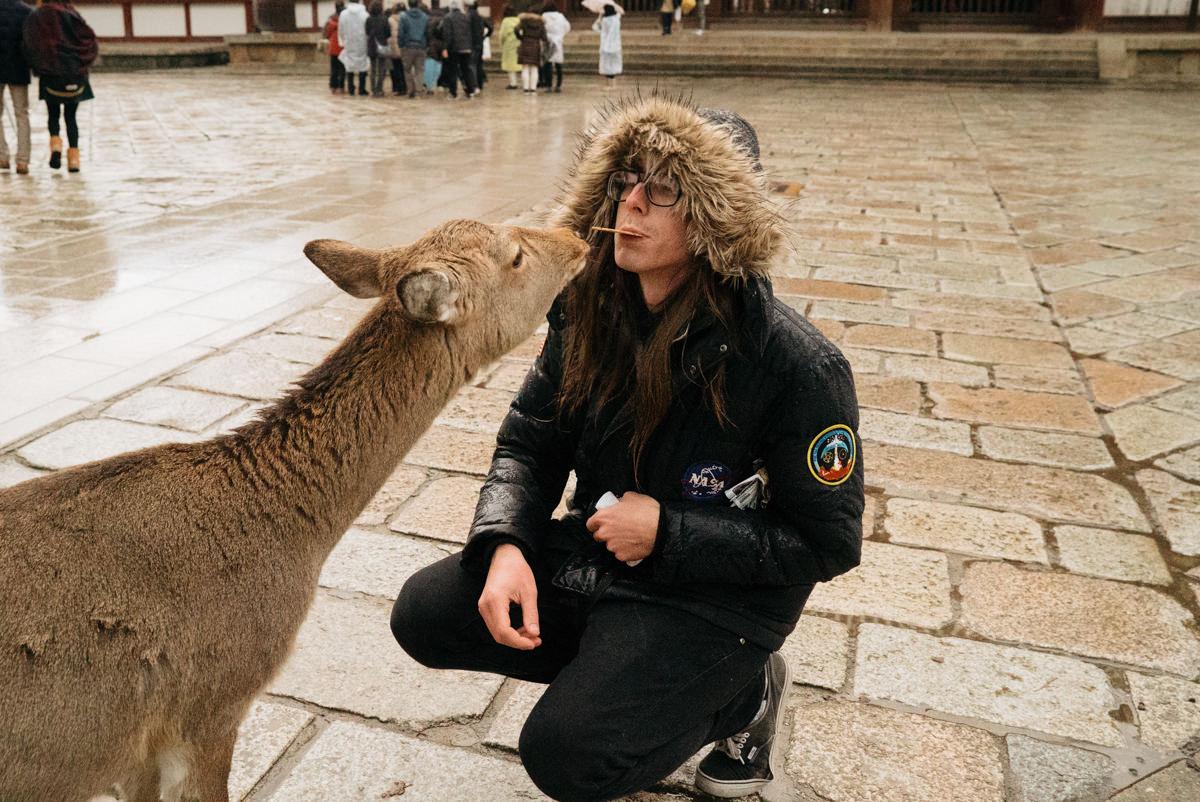 wrenee-nara-deer-park-japan-16.jpg