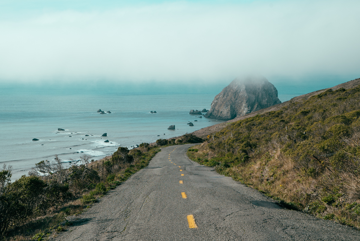 The winding road climbed and dropped for some time until we finally arrived to the coast of the Lost Coast.