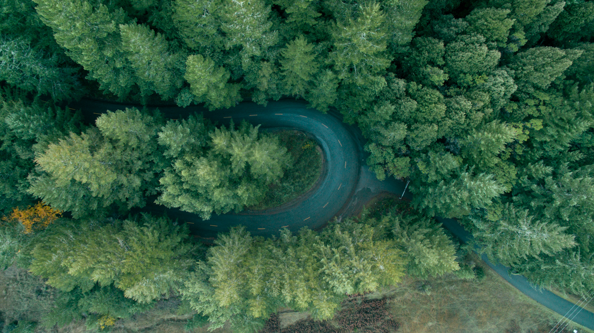 The drive back to Highway 101 from the Lost Coast returns through Humboldt State Park, where the road ping pongs between thousand year old redwoods. I flew my drone to capture this last hairpin turn before leaving the redwoods.