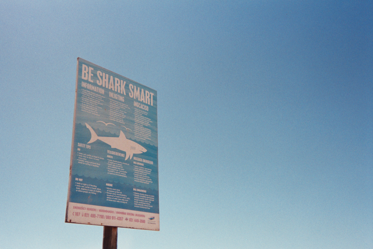 This is great white shark territory