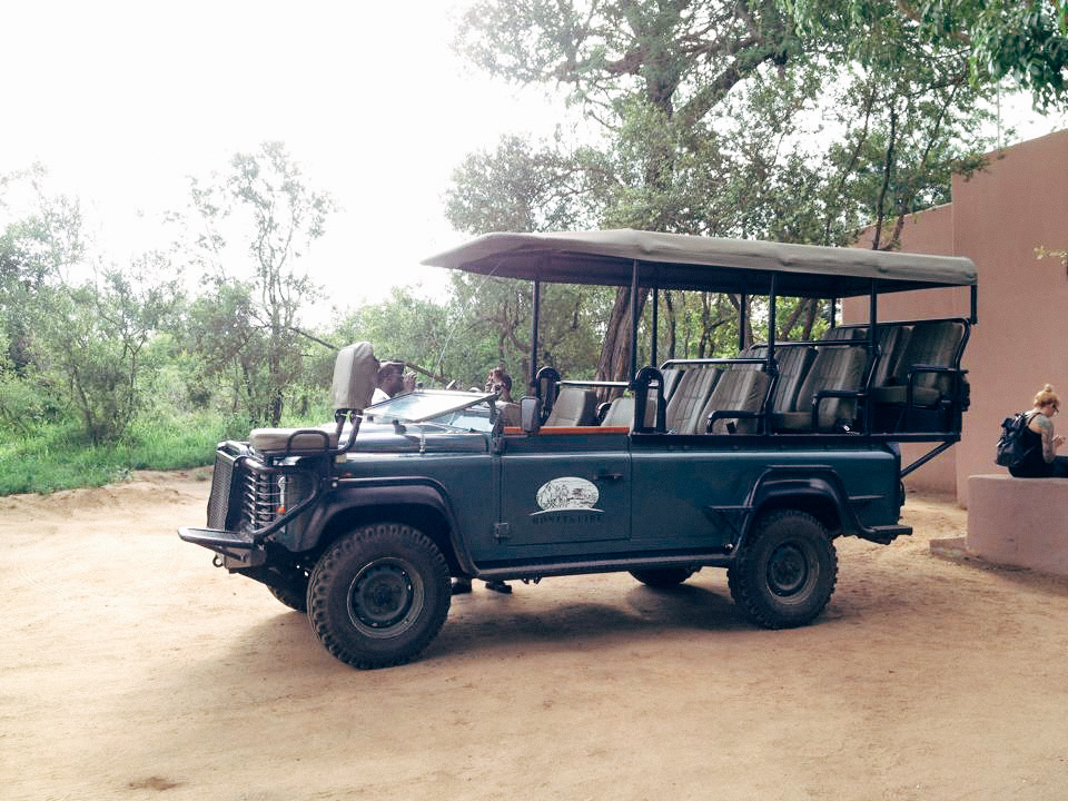 This converted Land Rover felt more like a land boat as it drove around the reserve, running over any bushes and small trees between it and the elusive white rhino. Our spotter, Phillip sat on the seat at the very front of the hood and would navigate our guide to the animals he spotted in the distance, and around treacherous spots where the ground had eroded, forming canyons in the road. On several of our drives Alex and I were the only guests, and could lounge with an entire row of seats to ourself.