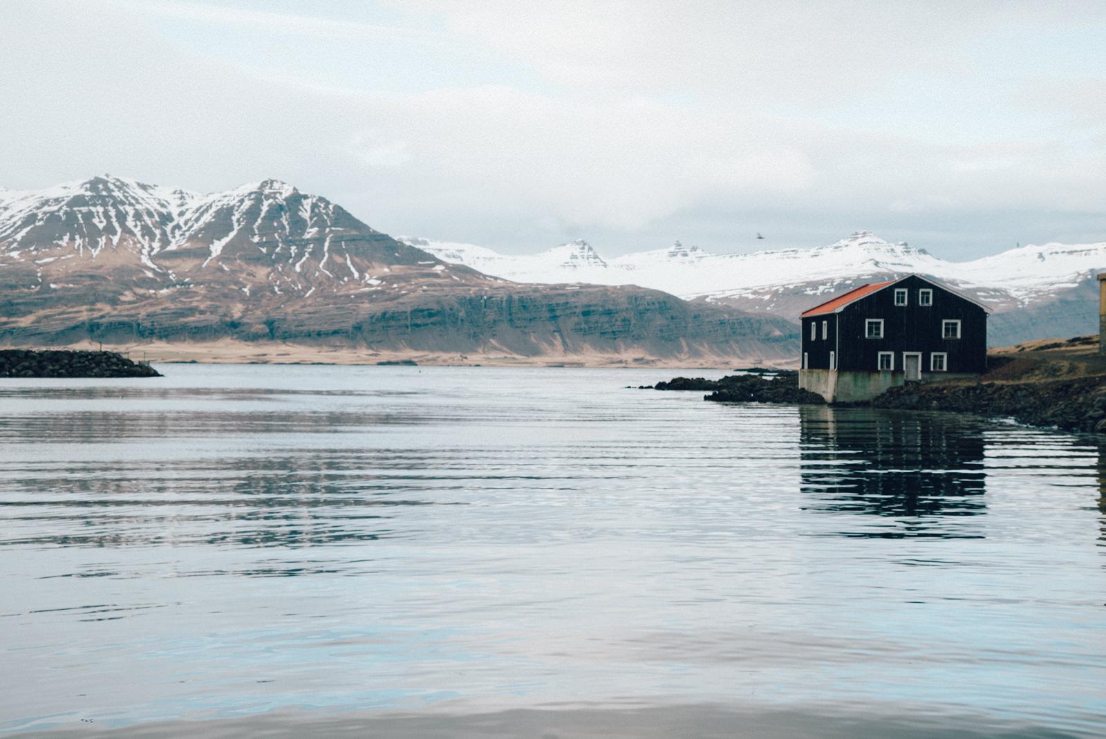 wrenee-east-fjords-1.jpg