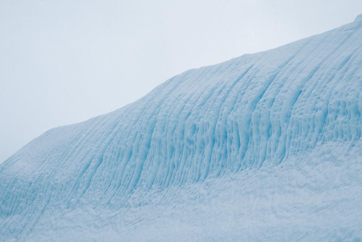 wrenee-antarctica-almirante-brown-3.jpg