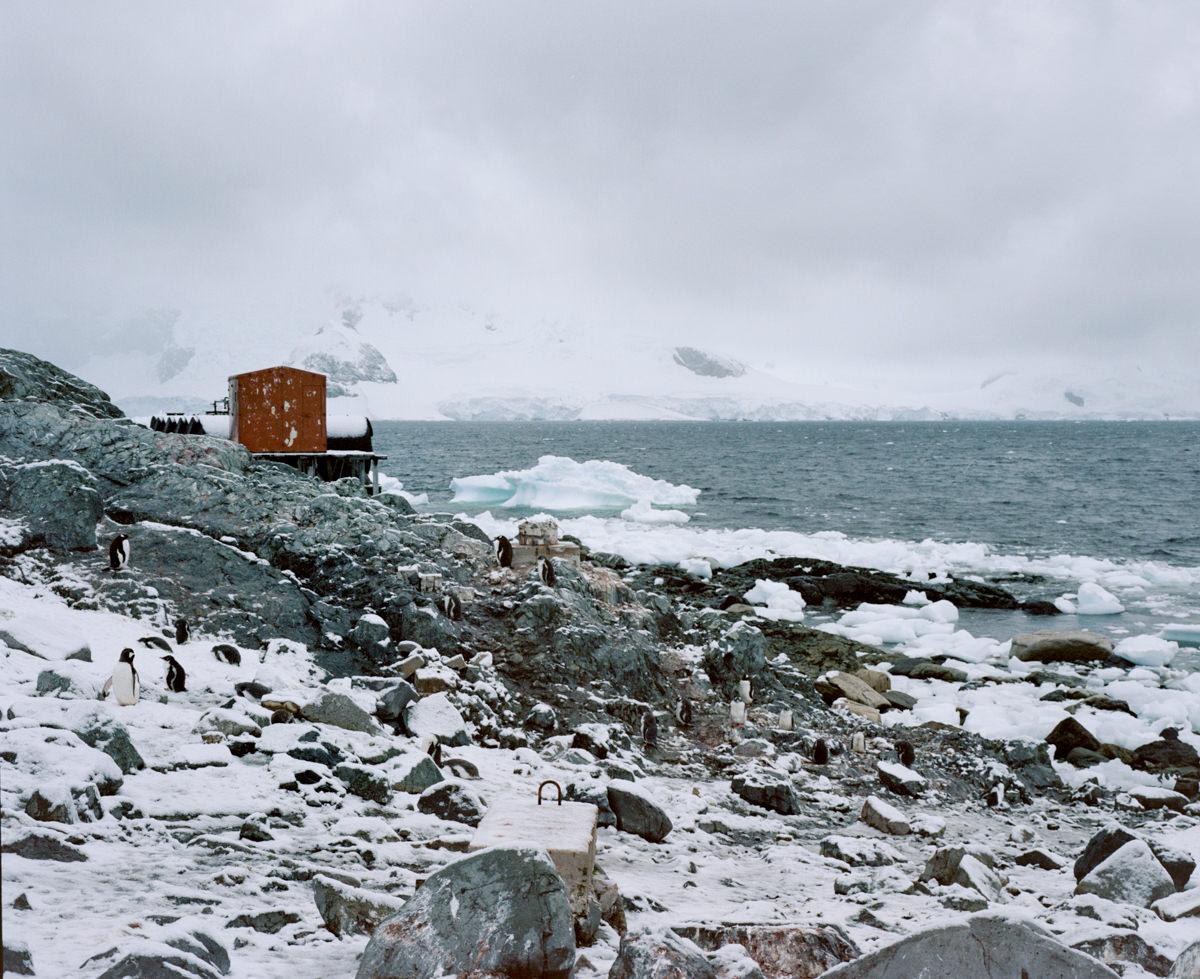 wrenee-antarctica-almirante-brown-mamiya-7ii-2.jpg