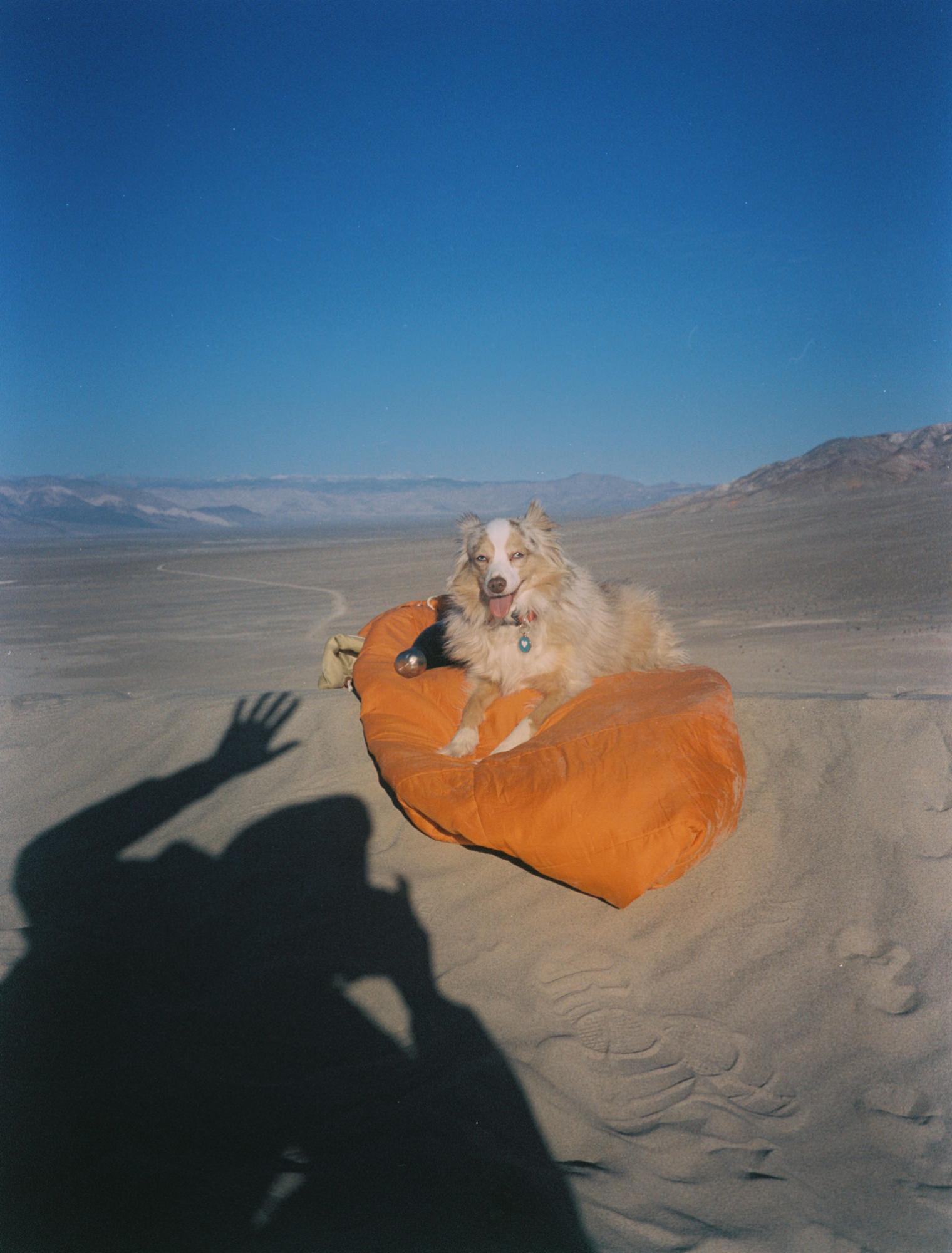 desert-camping-fujiGA645zi-23.jpg