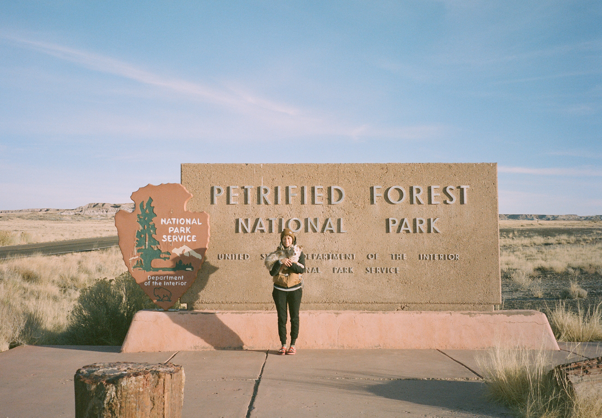 Petrified Forest NP is home to logs that are millions of years old and have been turned into stone, many cool geological formations, and the Painted Desert.