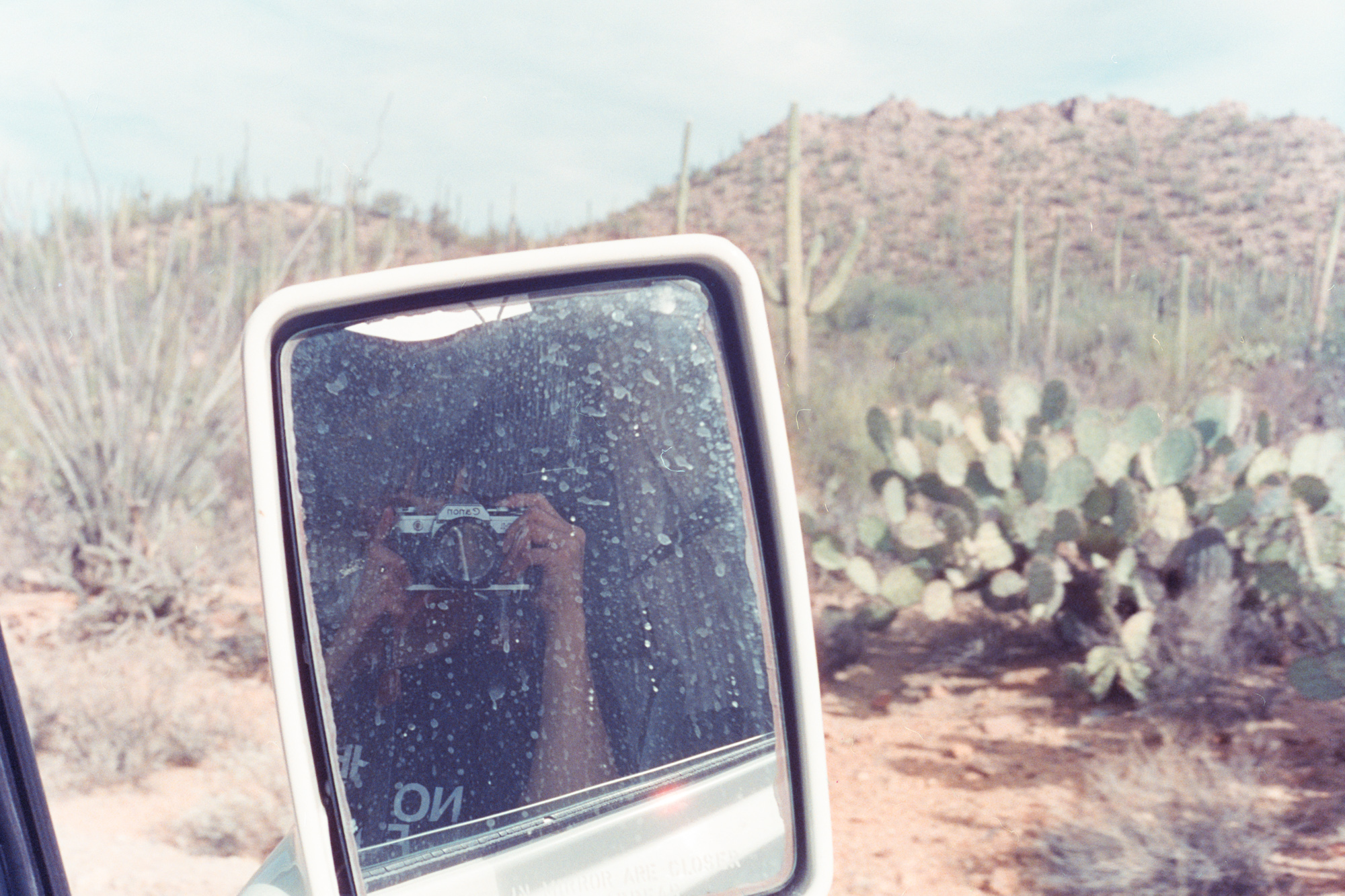 Shooting my Canon AE-1 in Saguaro National Park.