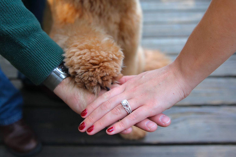 Engagement+Photos+Kirkland+Washington+14.jpg