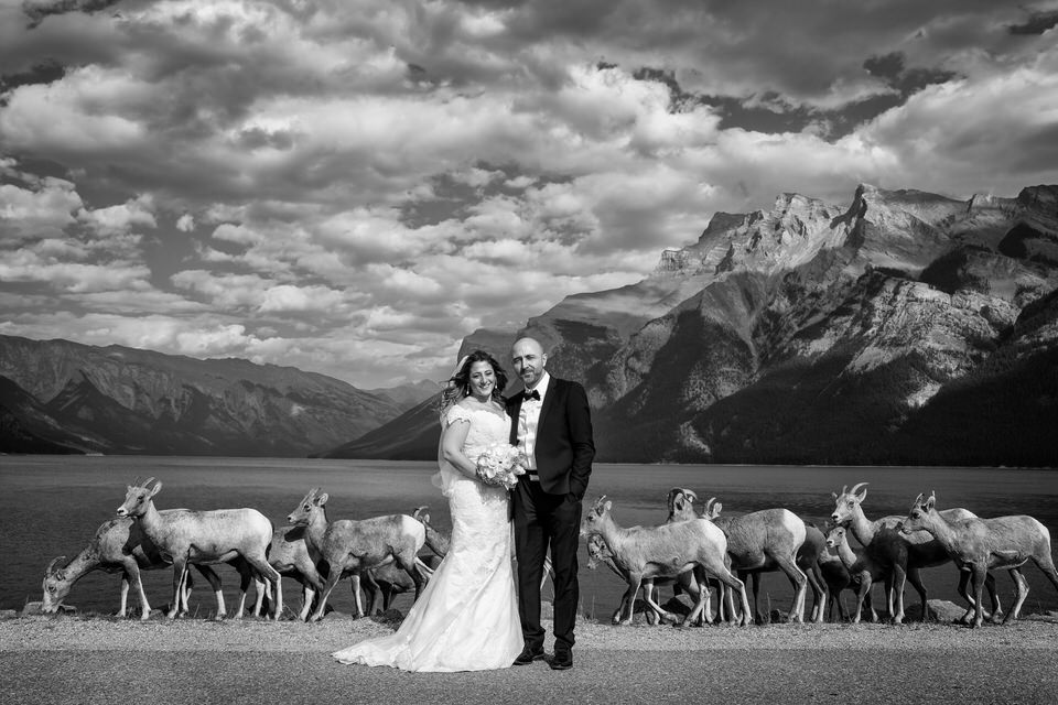 Bride and groom on the shore of Lake Minnewanka in Banff, AB