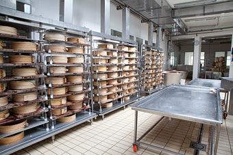 dairy01.jpg