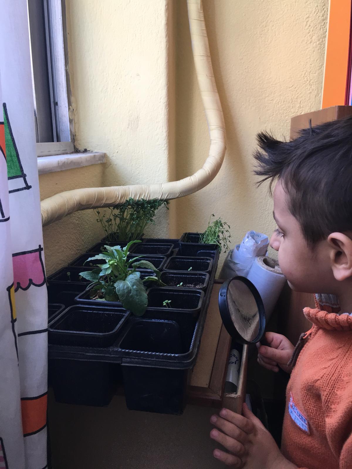 Baytna Boy with Plant.jpg