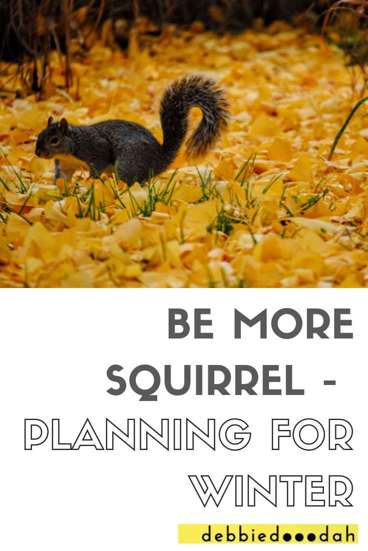 BE MORE SQUIRREL - PLANNING FOR WINTER.jpg