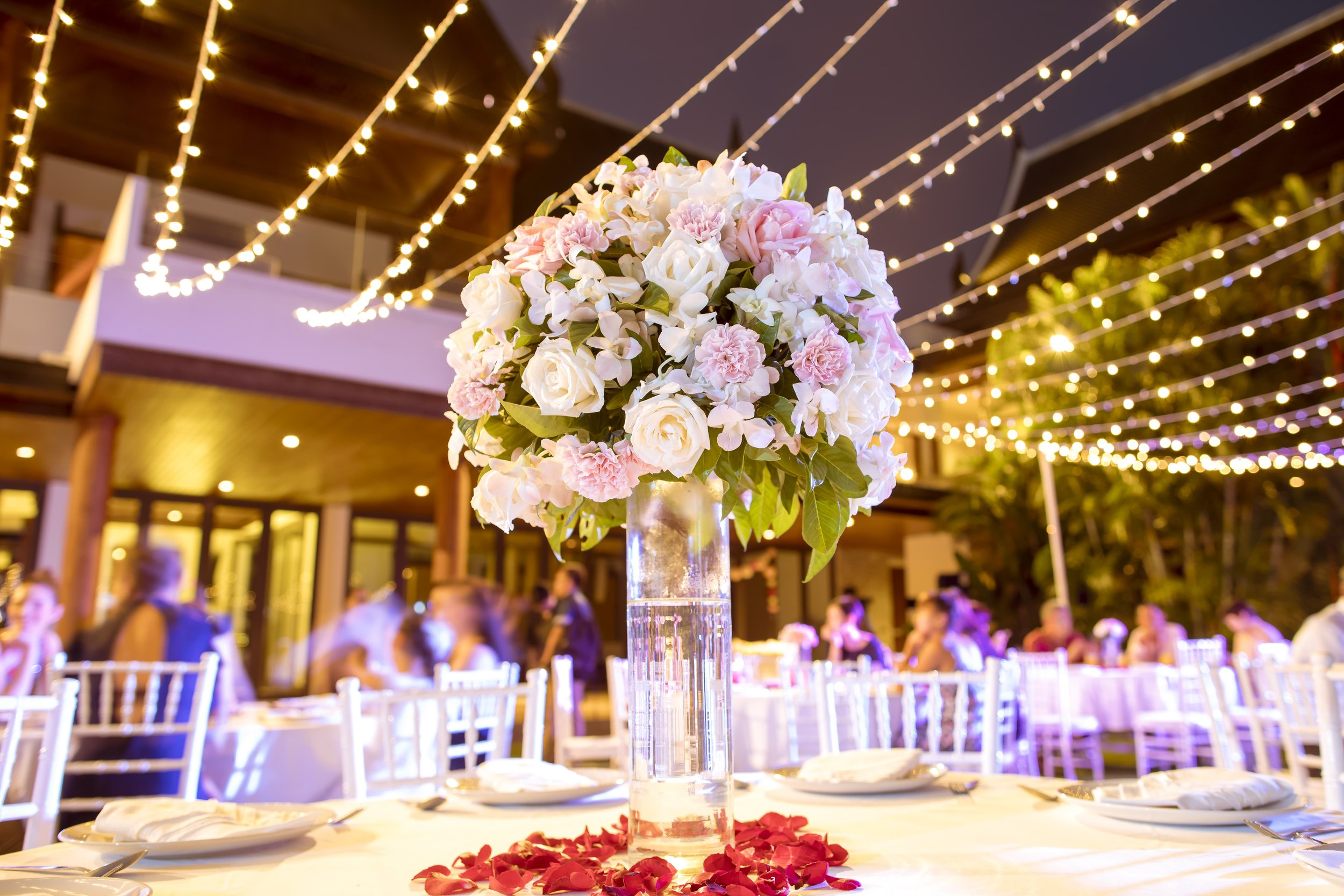 Wedding Reception with fairy light canopy