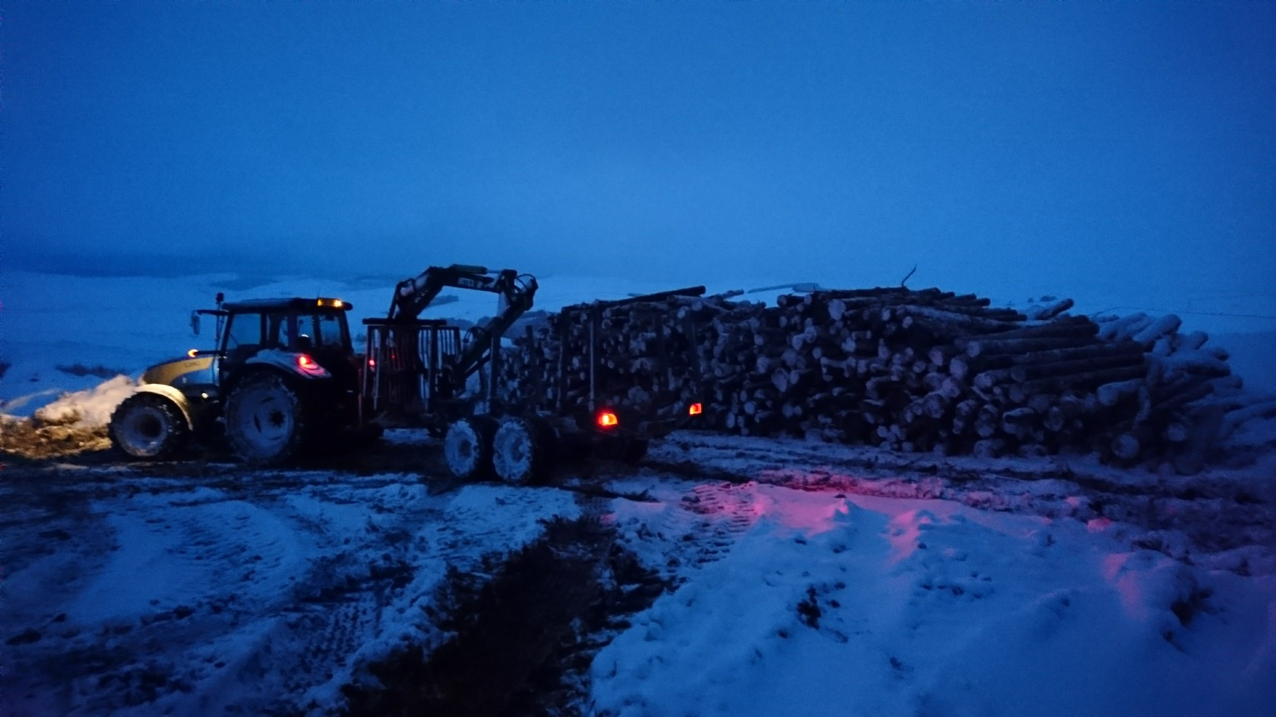 extracting 3 metre chip wood for biomass