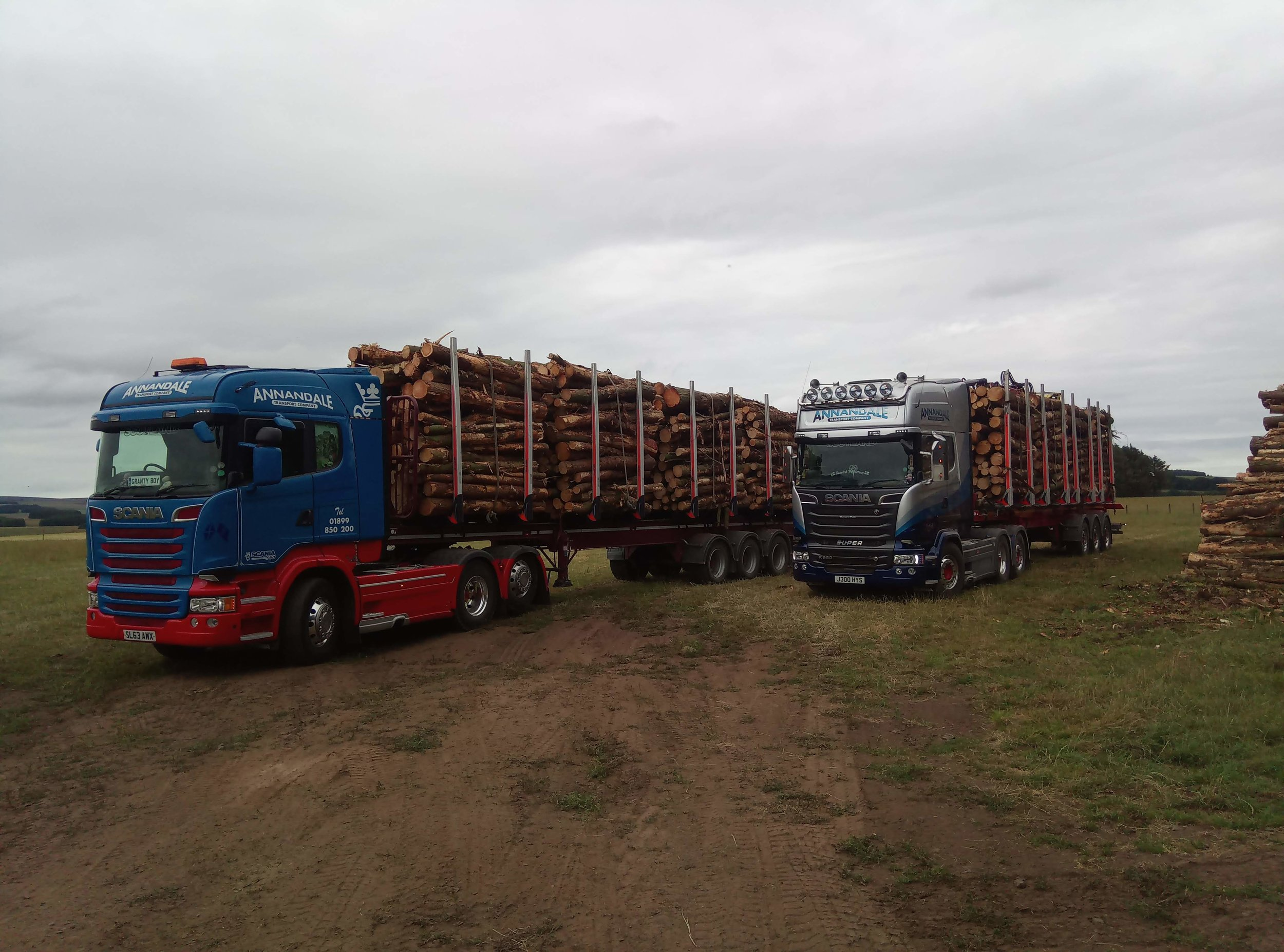 Timber trucks loading on a field-not something you see often during a typical Scottish summer!