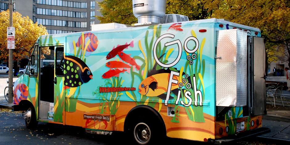 go-fish-main-2.jpg