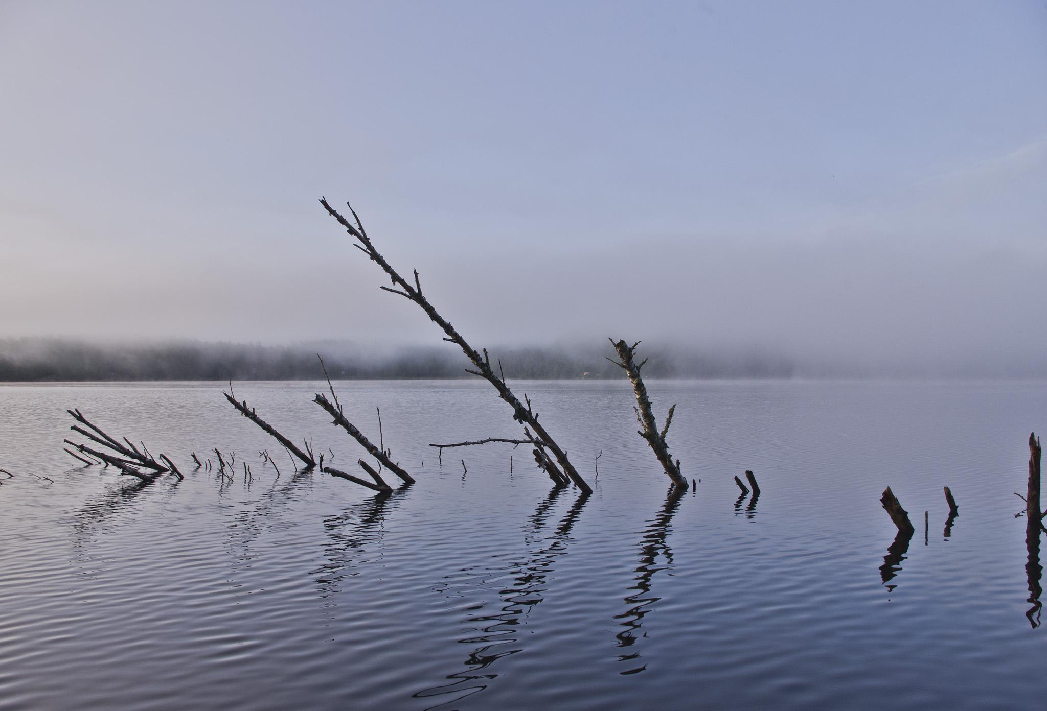 Water Sticks copy.jpg