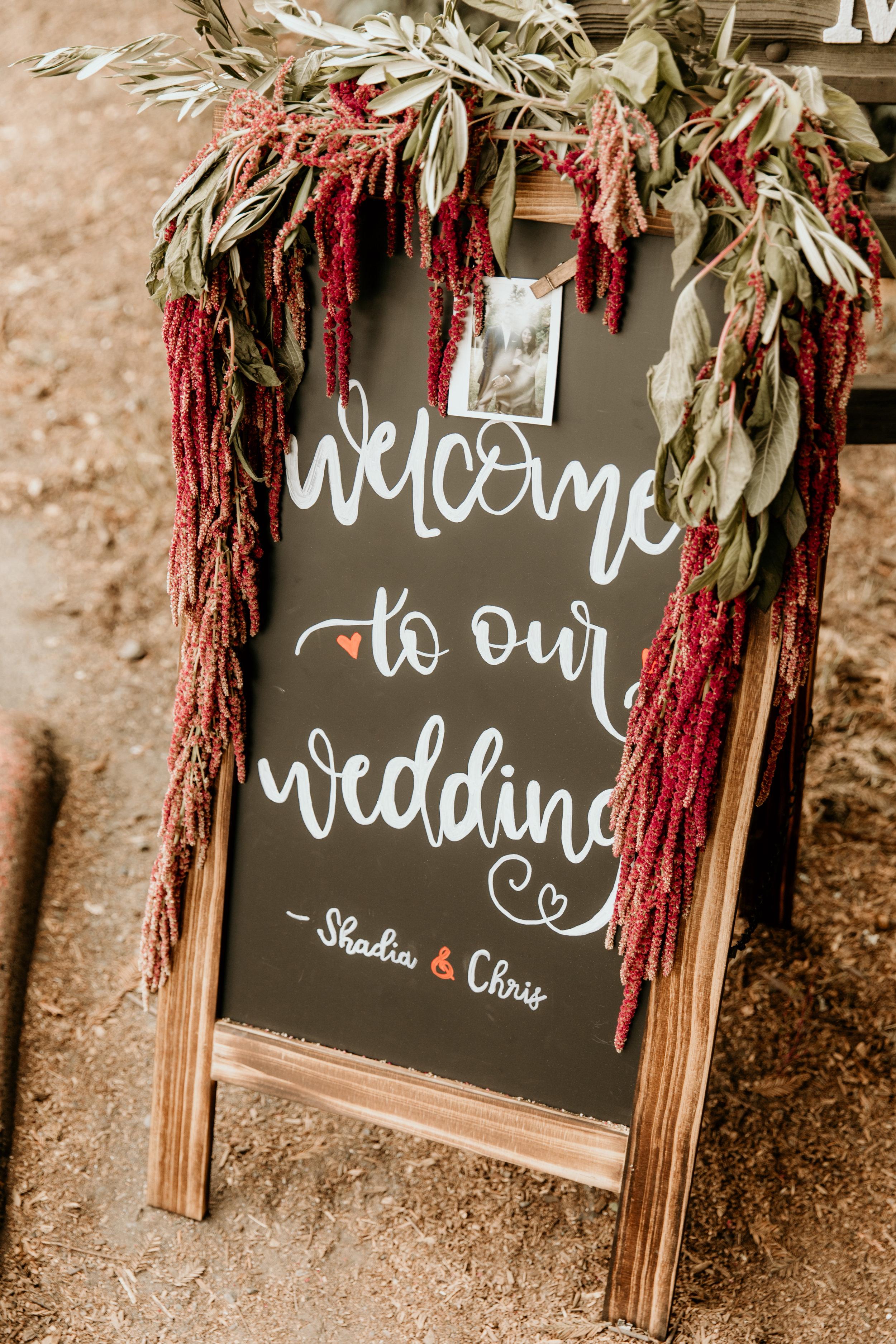 Shadia & Chris Wedding -131.jpg