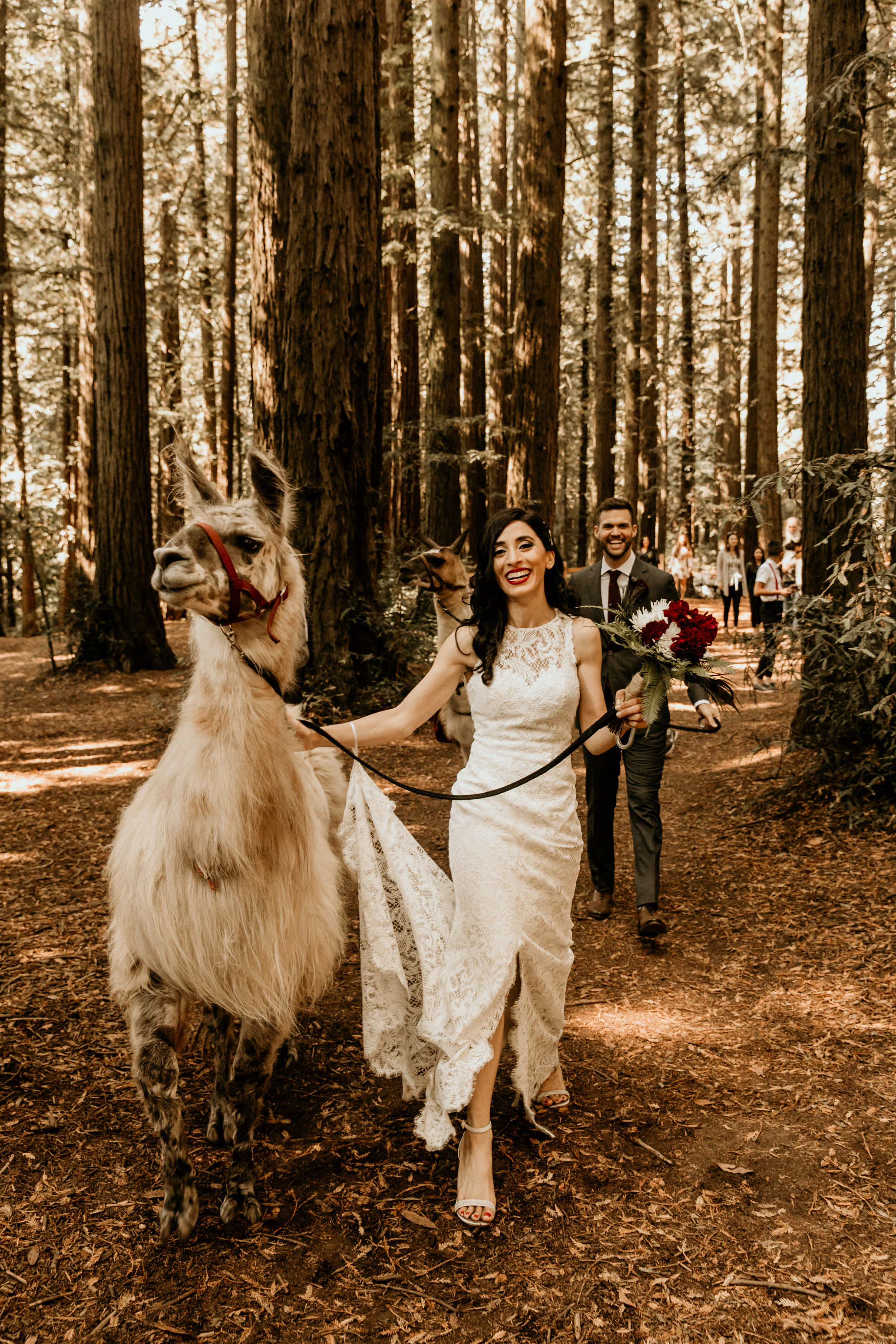 Shadia & Chris Wedding -171.jpg