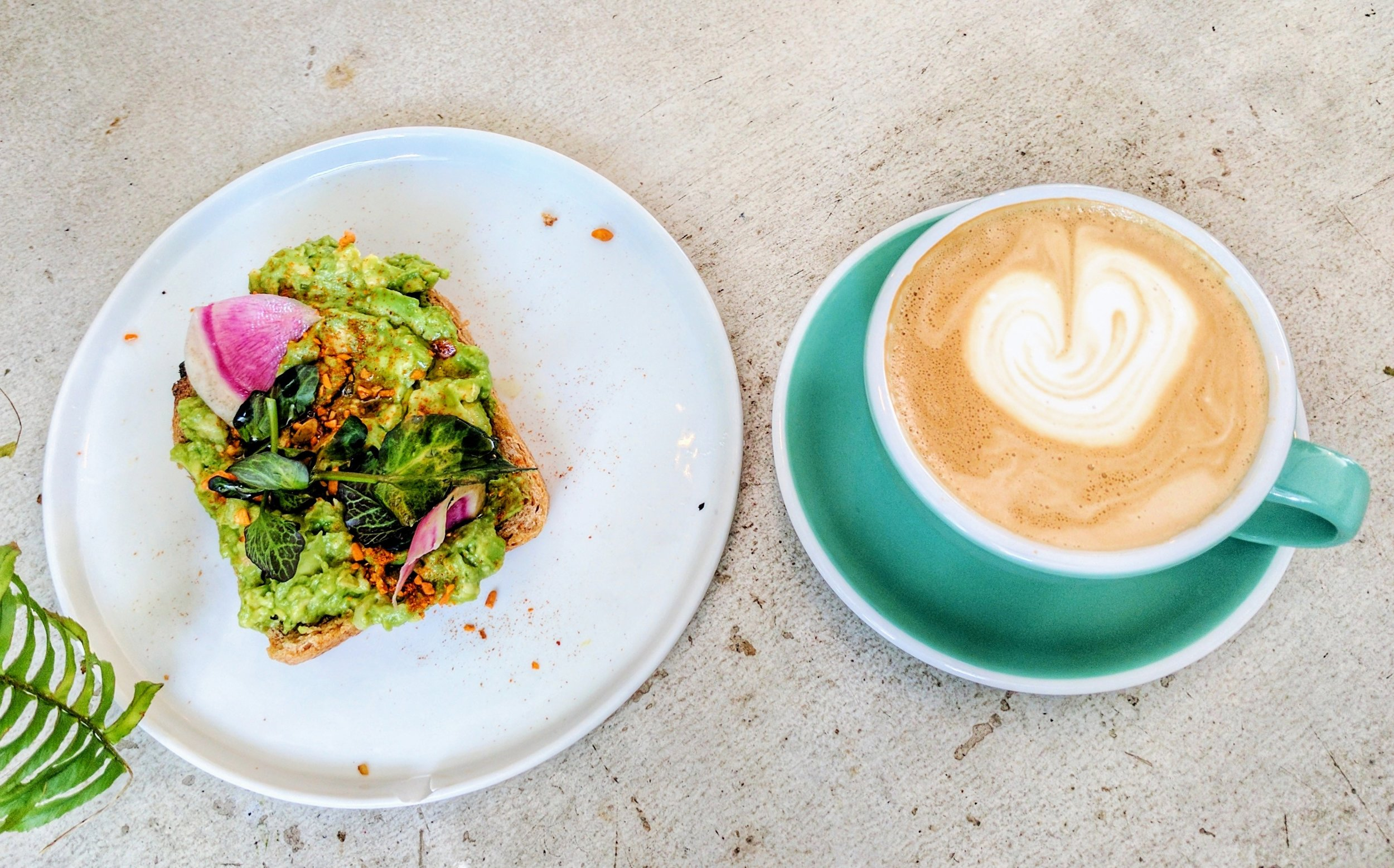 Lavender latte + seasoned avocado toast on multigrain sourdough with pickled shallot, dukkah and lime.