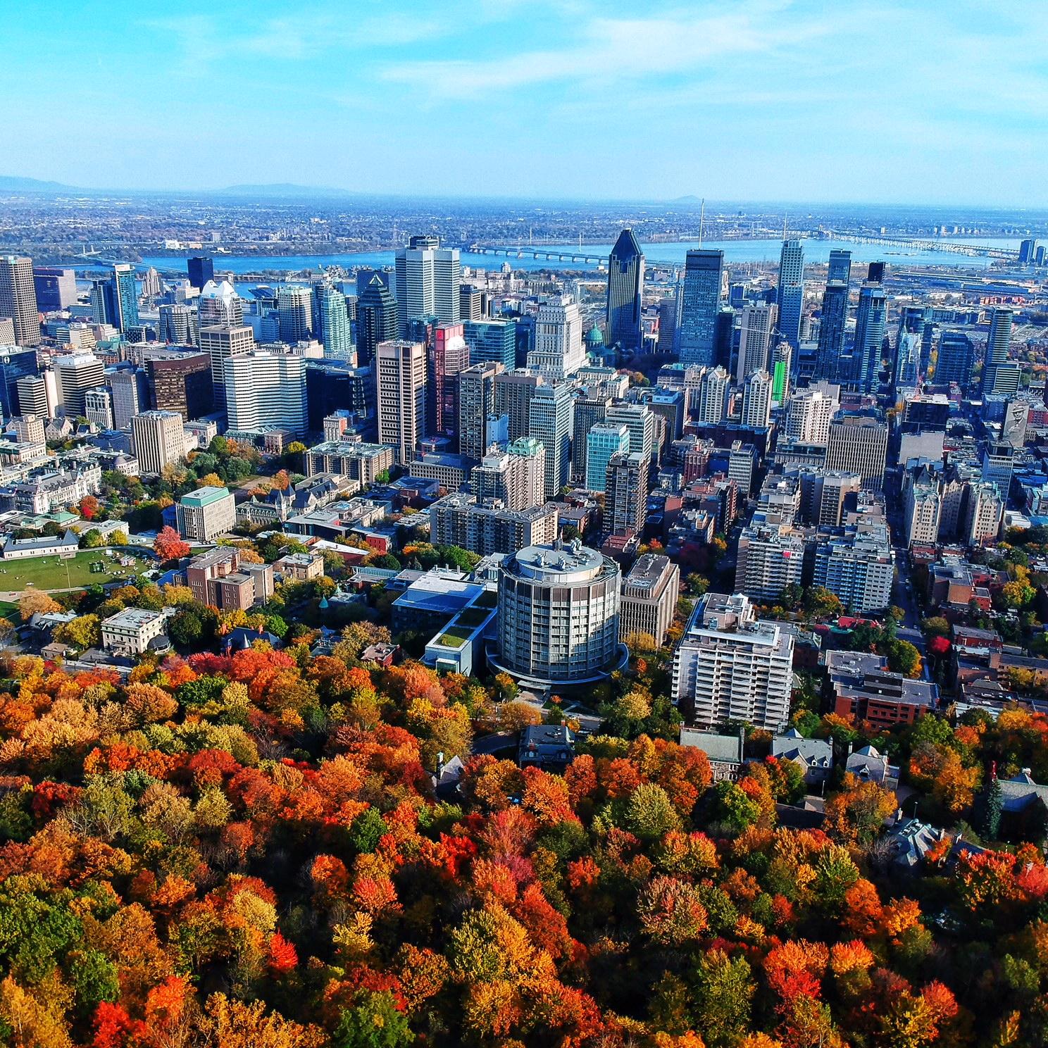 Mont Royal downtown view.jpeg