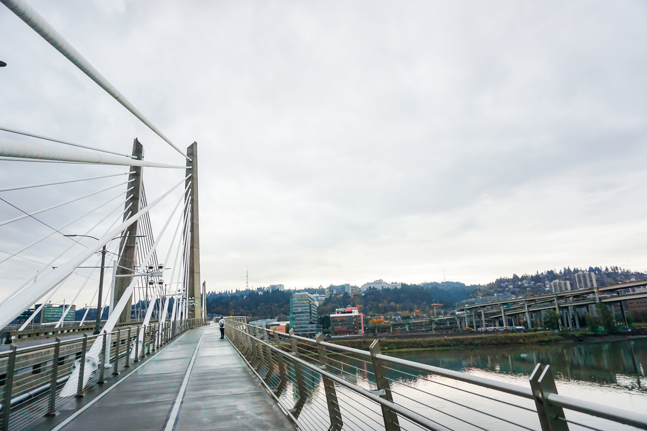 No cars allowed! Tilikum Crossing has the view of the Willamette you won't get anywhere else. Pop into OMSI afterwards to get your science on!