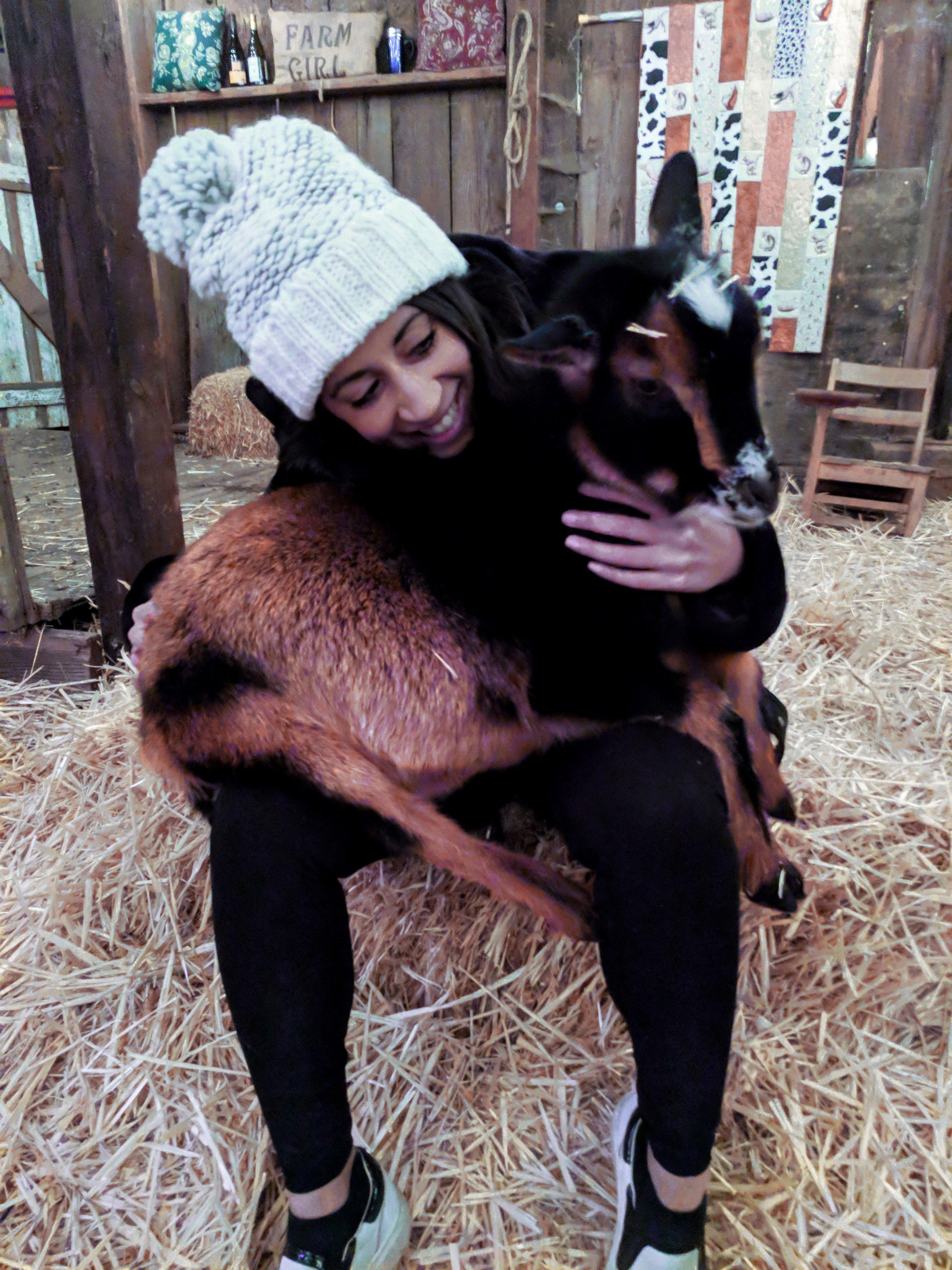 Goat-Yoga-goat-in-lap.jpg