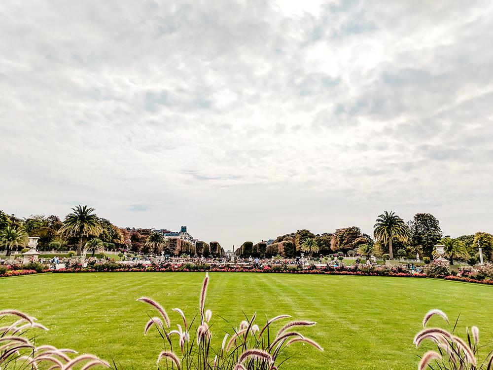 luxemborg-gardens-grass.jpg