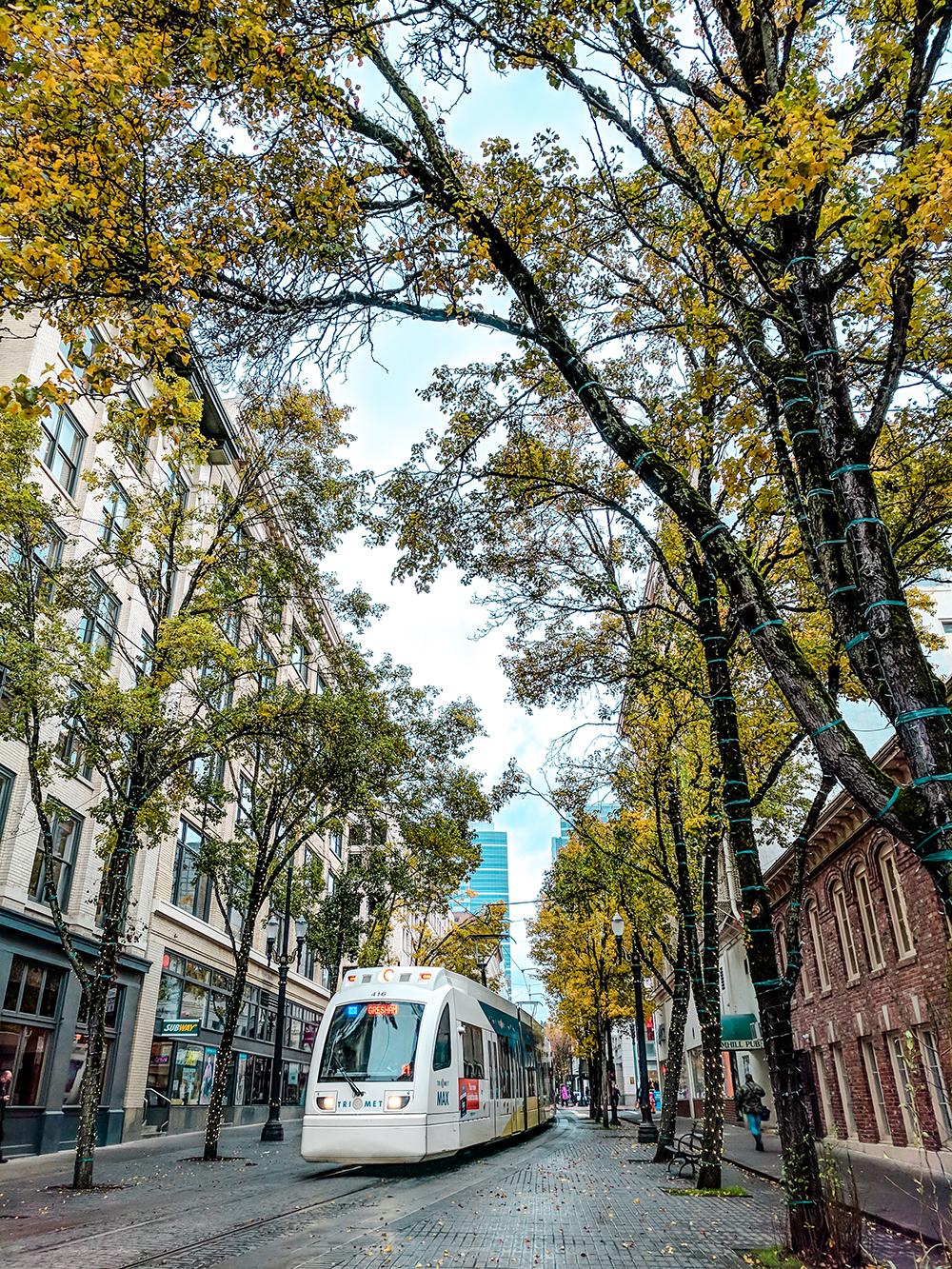 downtown-max-train.jpg
