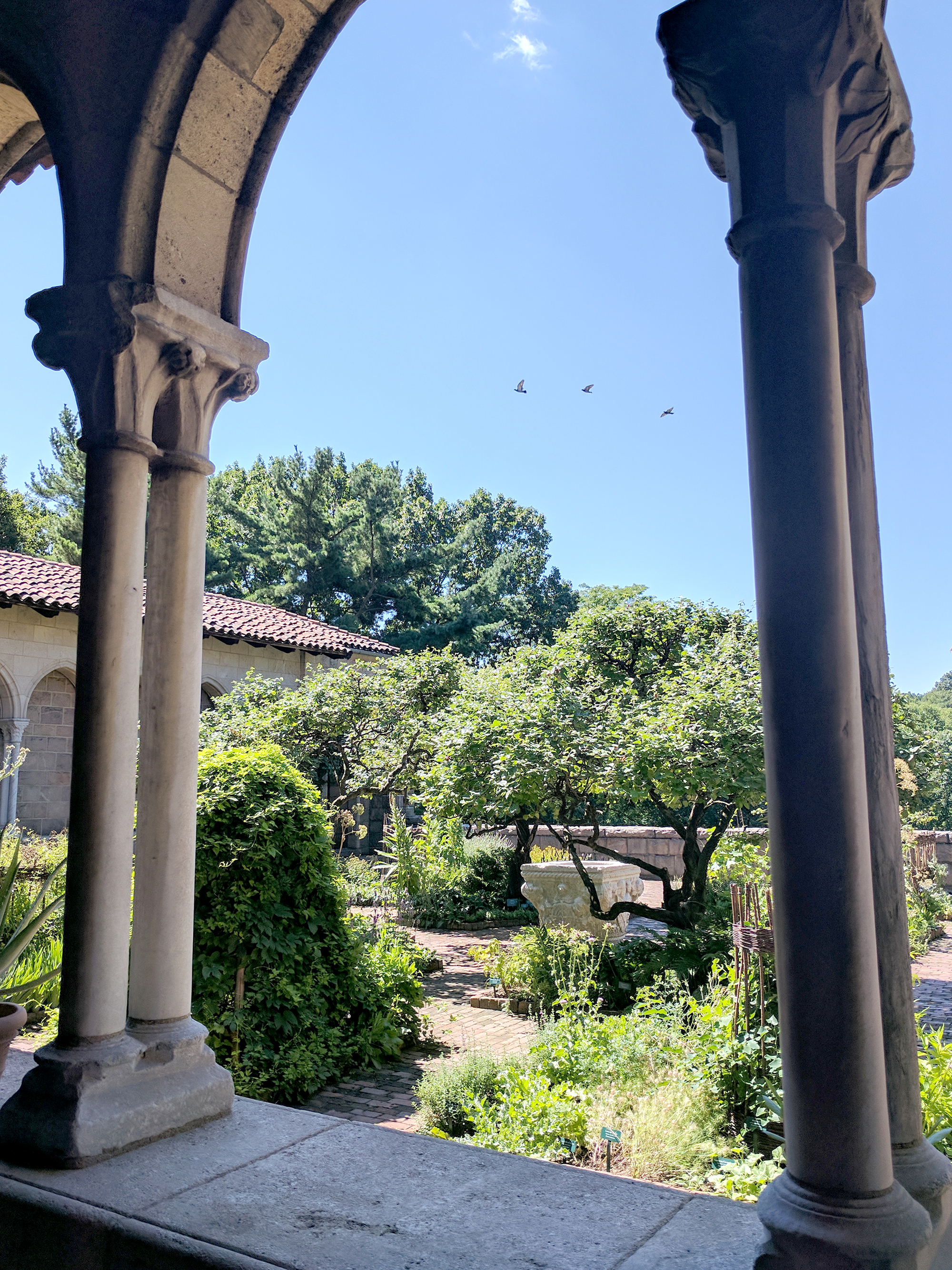Cloisters view