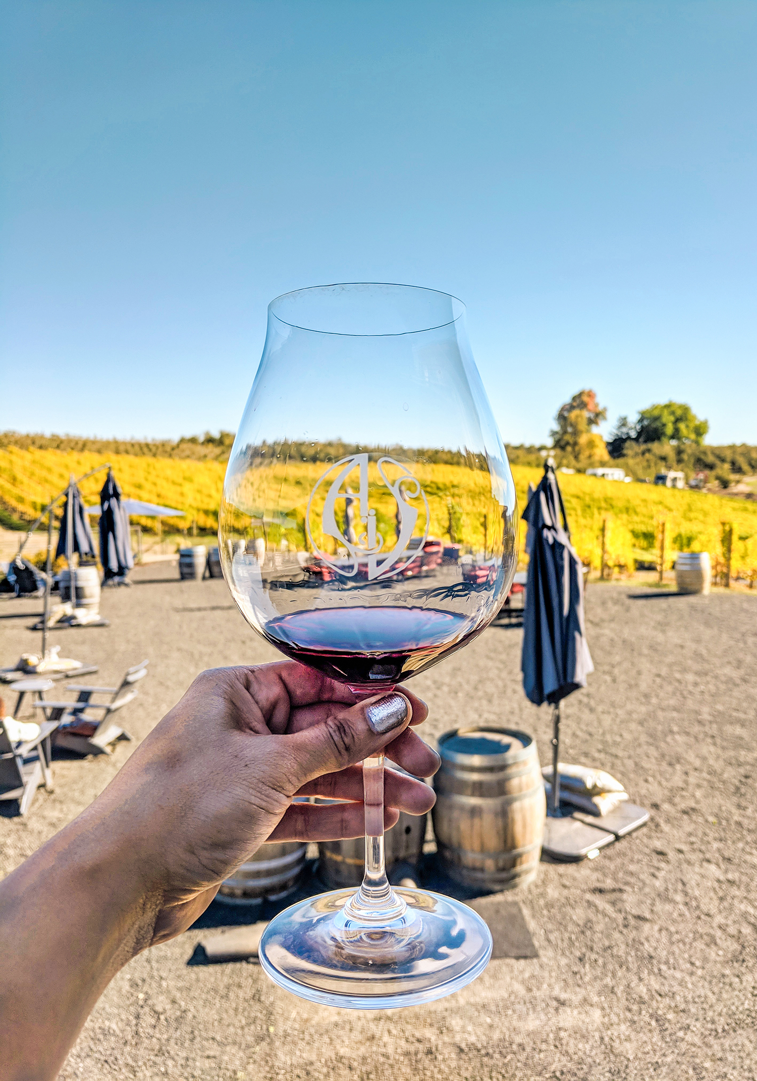 Adelsheim wine glass view