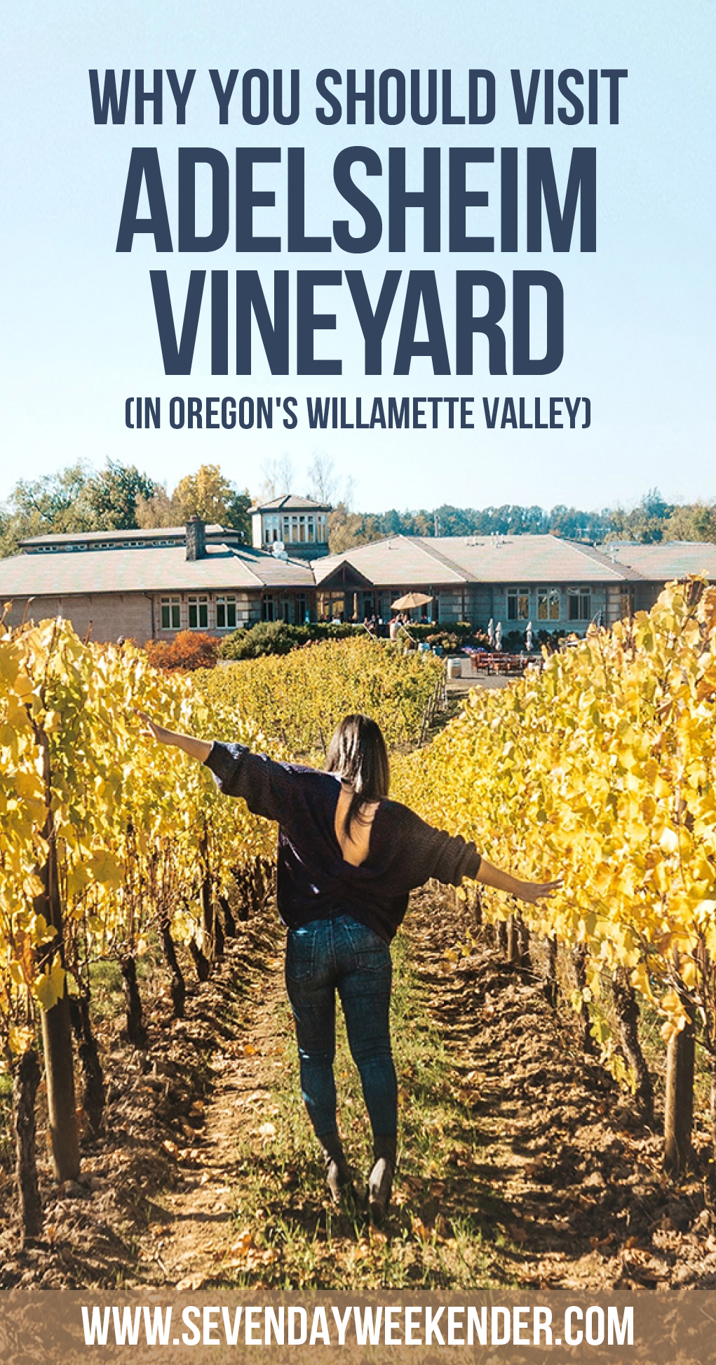 Why You Should Visit Adelsheim Vineyard