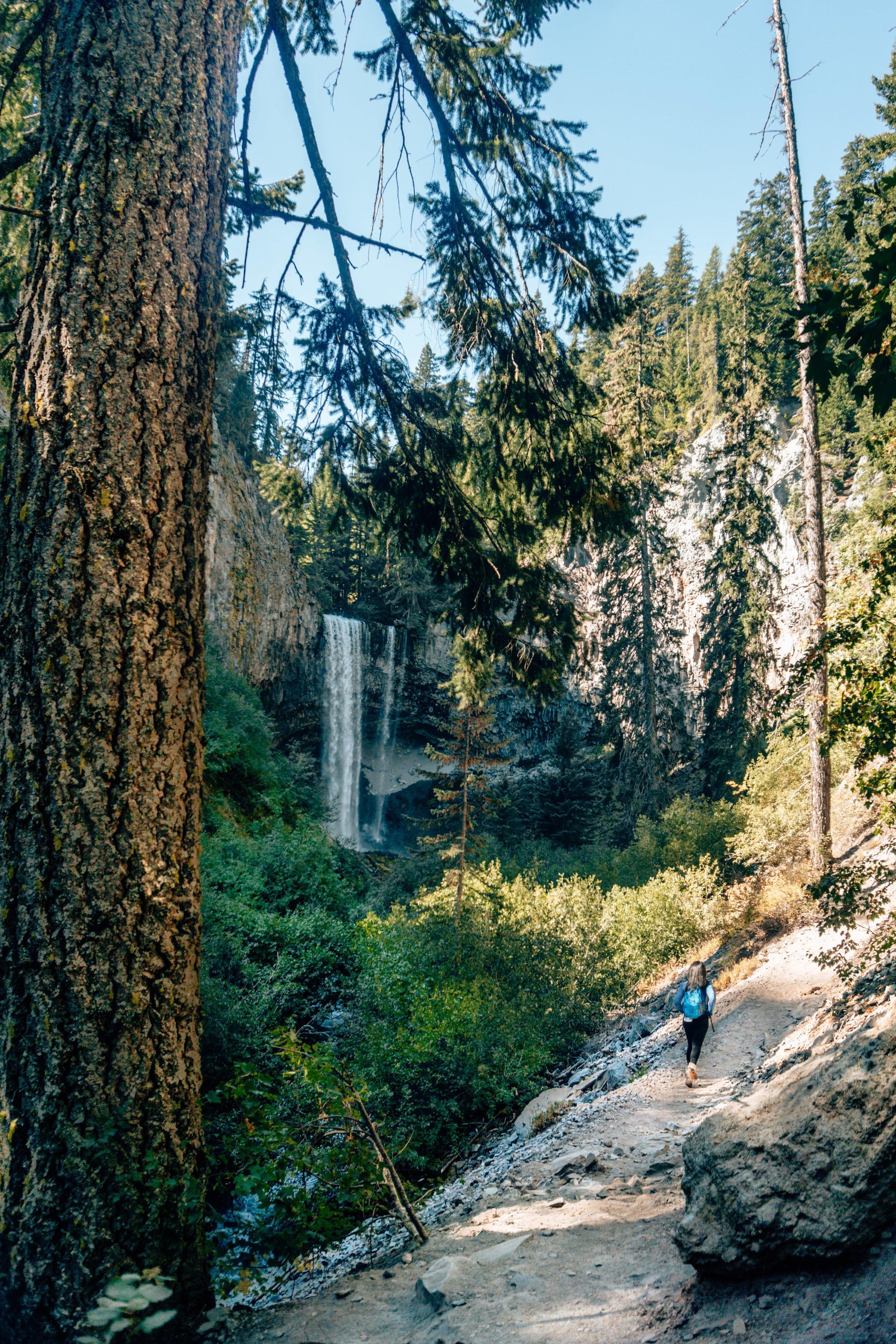 tamanawas-trail-falls.jpg