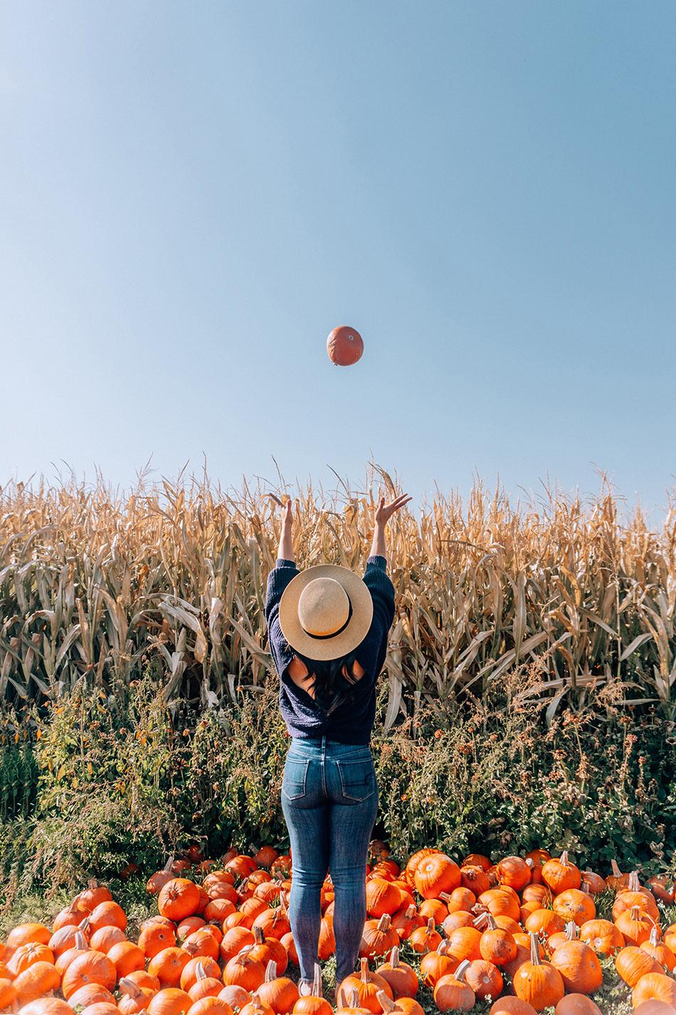 pumpkin-throw-v2.jpg