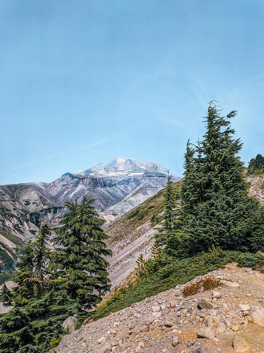 Mt Hood Zigzag trail