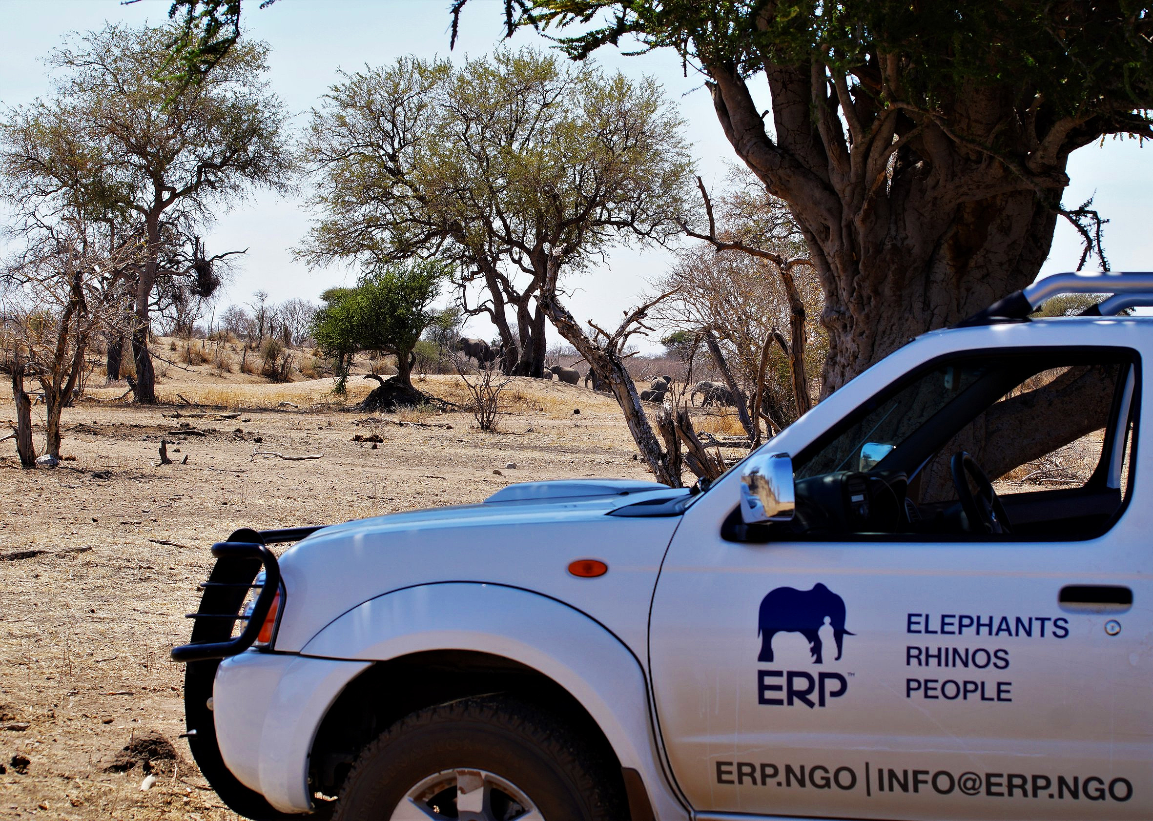 The ERP Team on a site-visit, observing the reserve's population of elephants. Photo: Ida Hansen