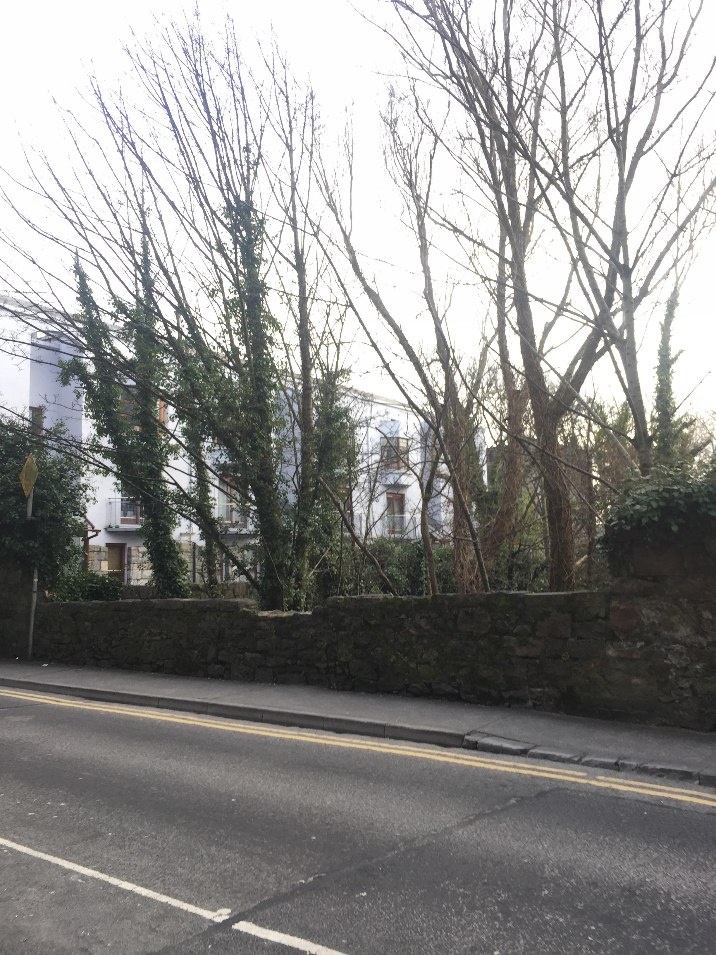 Galway_66.jpg