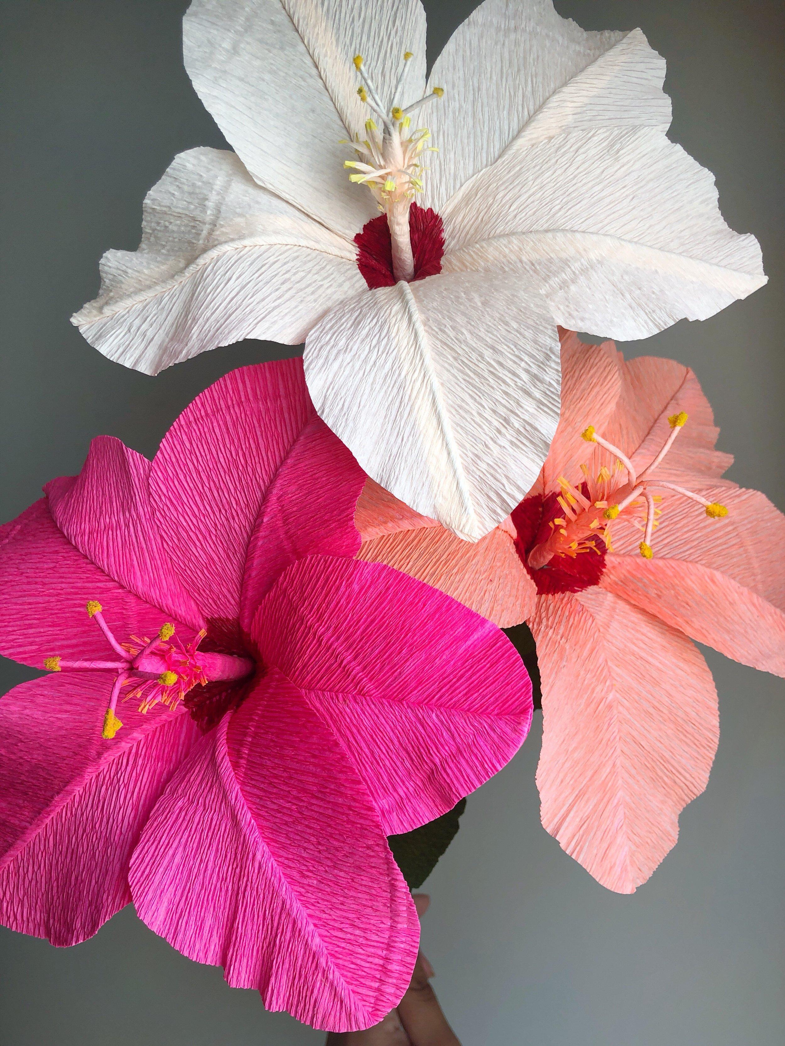 revery-flora-steadfastsupply-hibiscus02.jpeg